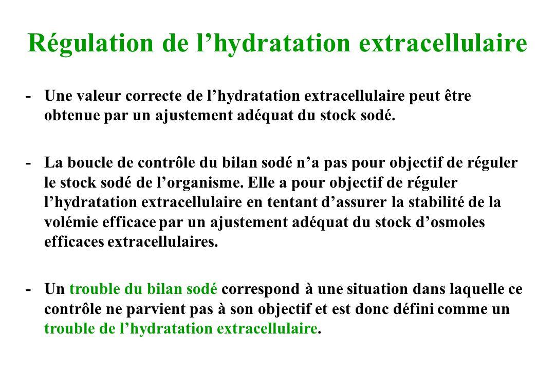Régulation de lhydratation extracellulaire - Une valeur correcte de lhydratation extracellulaire peut être obtenue par un ajustement adéquat du stock sodé.