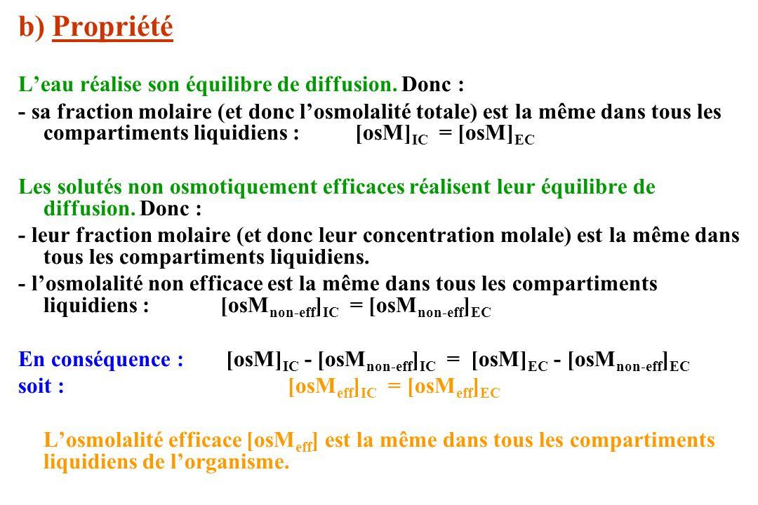 b) Propriété Leau réalise son équilibre de diffusion. Donc : - sa fraction molaire (et donc losmolalité totale) est la même dans tous les compartiment