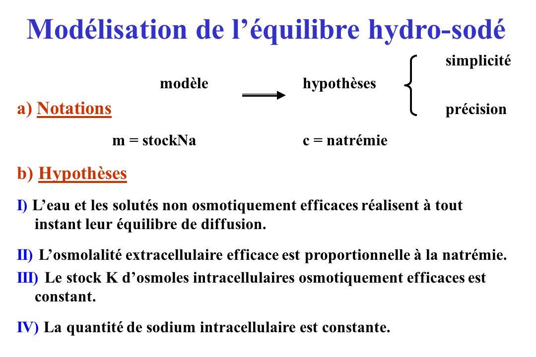 simplicité modèlehypothèses a) Notations précision m = stockNac = natrémie b) Hypothèses I) Leau et les solutés non osmotiquement efficaces réalisent à tout instant leur équilibre de diffusion.