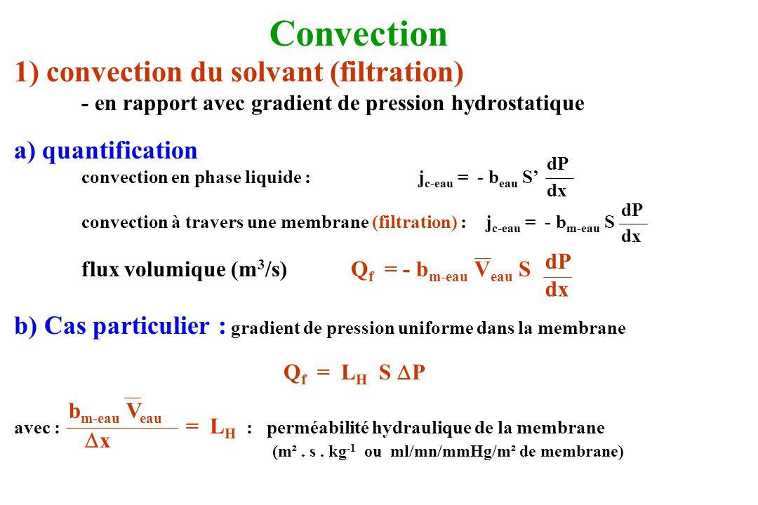 1) convection du solvant (filtration) - en rapport avec gradient de pression hydrostatique a) quantification convection en phase liquide :j c-eau = -