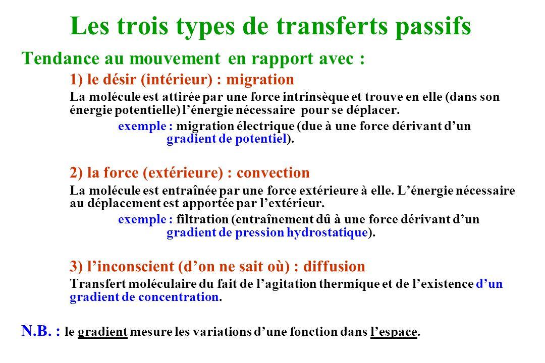 Les trois types de transferts passifs Tendance au mouvement en rapport avec : 1) le désir (intérieur) : migration La molécule est attirée par une forc