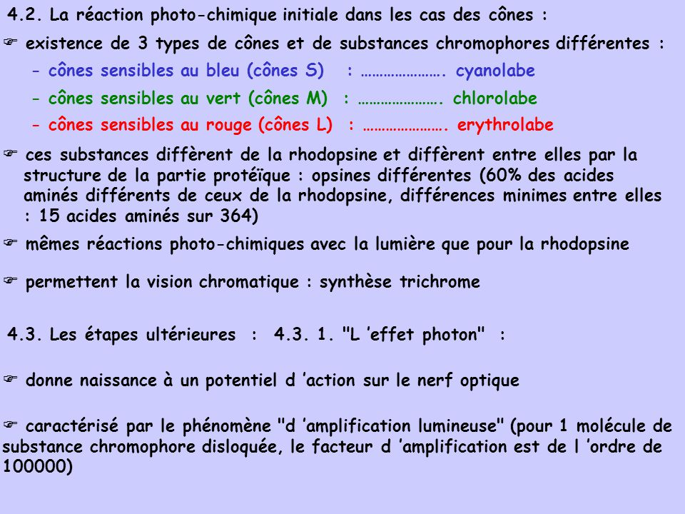 4.2. La réaction photo-chimique initiale dans les cas des cônes : existence de 3 types de cônes et de substances chromophores différentes : - cônes se
