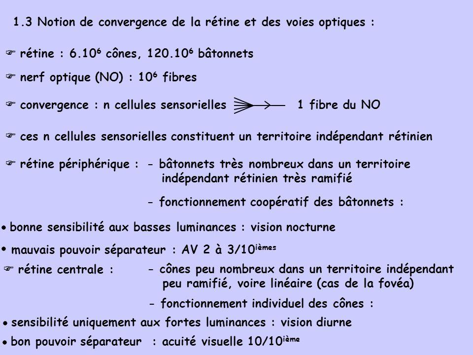1.3 Notion de convergence de la rétine et des voies optiques : rétine : 6.10 6 cônes, 120.10 6 bâtonnets nerf optique (NO) : 10 6 fibres ces n cellules sensorielles constituent un territoire indépendant rétinien rétine périphérique : - bâtonnets très nombreux dans un territoire indépendant rétinien très ramifié - fonctionnement coopératif des bâtonnets : bonne sensibilité aux basses luminances : vision nocturne mauvais pouvoir séparateur : AV 2 à 3/10 ièmes rétine centrale : - cônes peu nombreux dans un territoire indépendant peu ramifié, voire linéaire (cas de la fovéa) - fonctionnement individuel des cônes : sensibilité uniquement aux fortes luminances : vision diurne bon pouvoir séparateur : acuité visuelle 10/10 ième convergence : n cellules sensorielles 1 fibre du NO
