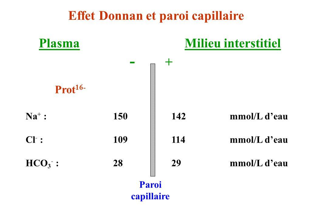 Prot 16- Na + :150142mmol/L deau Cl - :109114mmol/L deau HCO 3 - :2829mmol/L deau PlasmaMilieu interstitiel - + Paroi capillaire Effet Donnan et paroi