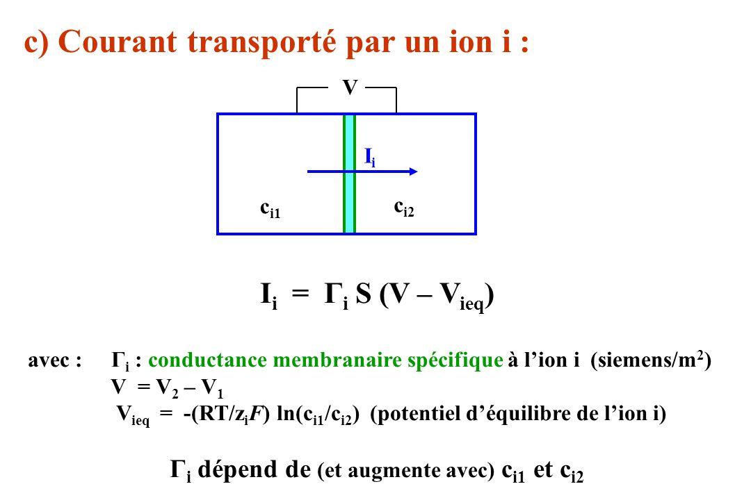 c) Courant transporté par un ion i : c i1 c i2 IiIi V I i = Γ i S (V – V ieq ) avec : Γ i : conductance membranaire spécifique à lion i (siemens/m 2 )