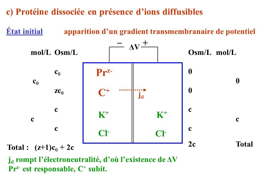 c) Protéine dissociée en présence dions diffusibles État initial apparition dun gradient transmembranaire de potentiel ΔVΔV Pr z- mol/LOsm/L c 0 zc 0