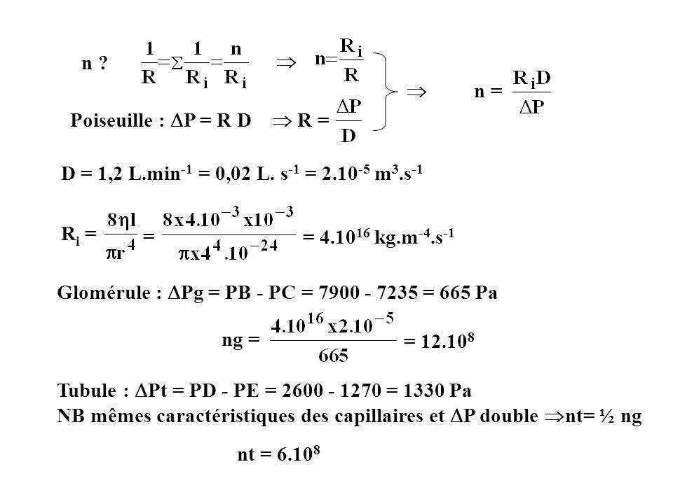 n = n ? Poiseuille : P = R D R = D = 1,2 L.min -1 = 0,02 L. s -1 = 2.10 -5 m 3.s -1 R i = = = 4.10 16 kg.m -4.s -1 Glomérule : Pg = PB - PC = 7900 - 7