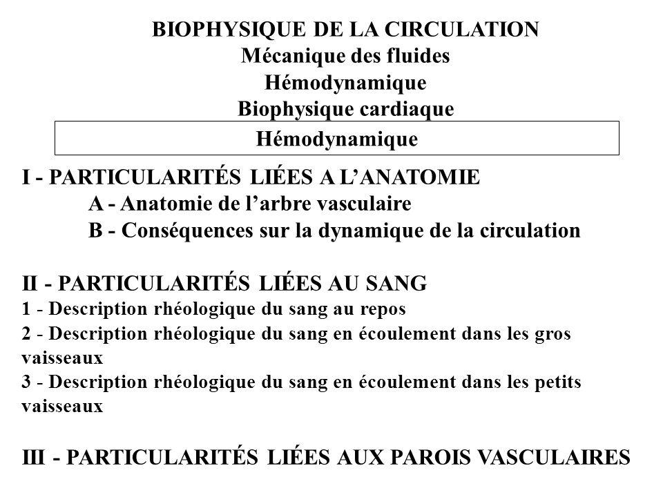 BIOPHYSIQUE DE LA CIRCULATION Mécanique des fluides Hémodynamique Biophysique cardiaque Hémodynamique I - PARTICULARITÉS LIÉES A LANATOMIE A - Anatomi