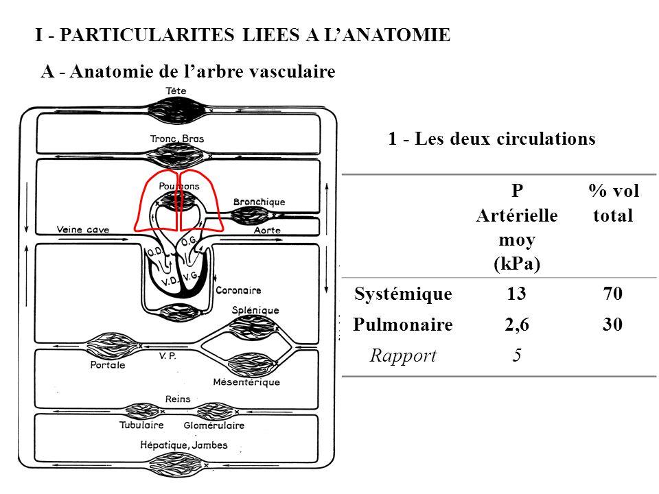 I - PARTICULARITES LIEES A LANATOMIE A - Anatomie de larbre vasculaire 1 - Les deux circulations P Artérielle moy (kPa) % vol total Systémique1370 Pul