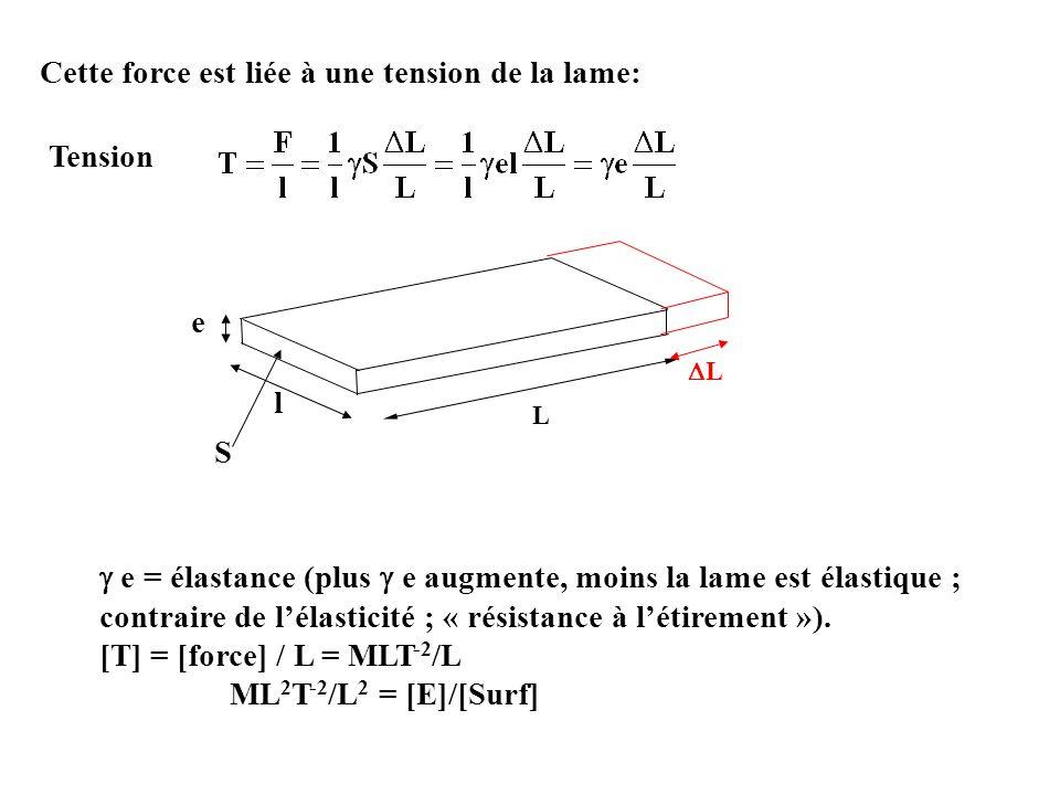 Cette force est liée à une tension de la lame: Tension e = élastance (plus e augmente, moins la lame est élastique ; contraire de lélasticité ; « rési