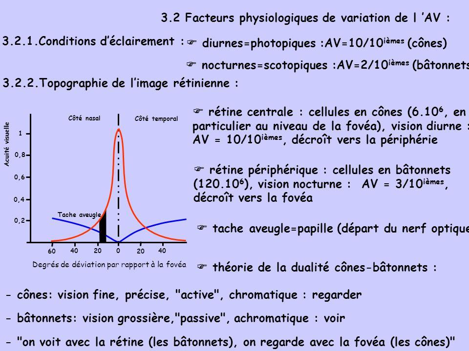 3.2 Facteurs physiologiques de variation de l AV : 3.2.1.Conditions déclairement : rétine centrale : cellules en cônes (6.10 6, en particulier au niveau de la fovéa), vision diurne : AV = 10/10 ièmes, décroît vers la périphérie diurnes=photopiques :AV=10/10 ièmes (cônes) 3.2.2.Topographie de limage rétinienne : Tache aveugle 0 20 40 Acuité visuelle 60 4020 0,2 0,4 0,6 0,8 1 Côté nasal Côté temporal Degrés de déviation par rapport à la fovéa rétine périphérique : cellules en bâtonnets (120.10 6 ), vision nocturne : AV = 3/10 ièmes, décroît vers la fovéa tache aveugle=papille (départ du nerf optique) théorie de la dualité cônes-bâtonnets : - cônes: vision fine, précise, active , chromatique : regarder - bâtonnets: vision grossière, passive , achromatique : voir - on voit avec la rétine (les bâtonnets), on regarde avec la fovéa (les cônes) nocturnes=scotopiques :AV=2/10 ièmes (bâtonnets)