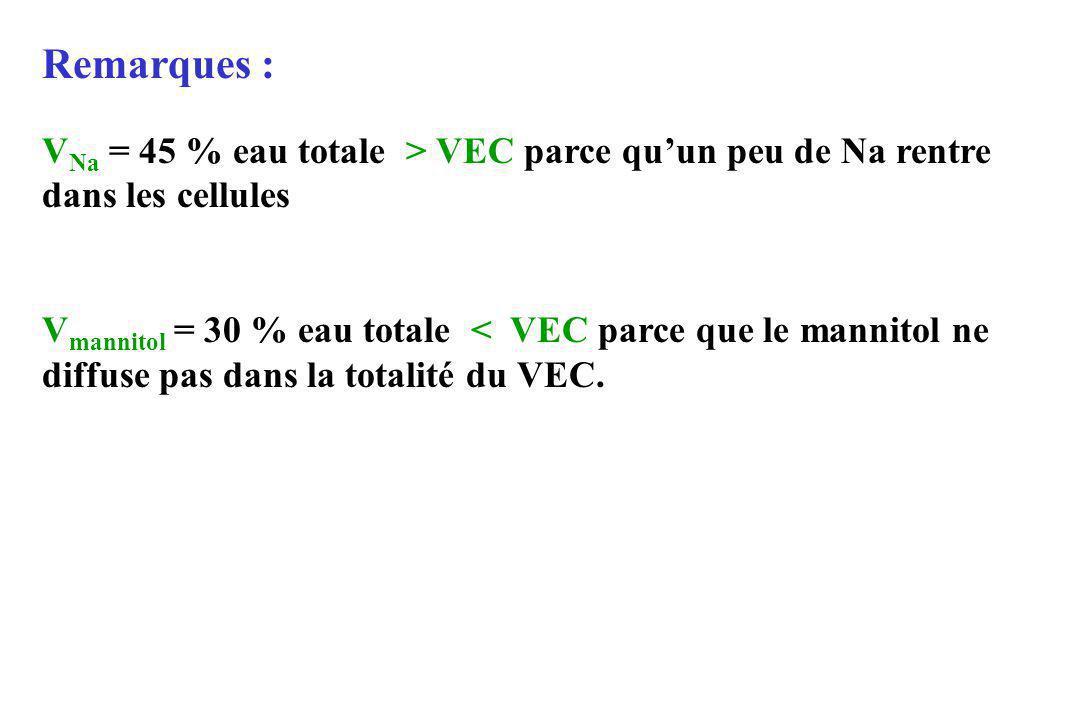 Remarques : V Na = 45 % eau totale > VEC parce quun peu de Na rentre dans les cellules V mannitol = 30 % eau totale < VEC parce que le mannitol ne dif