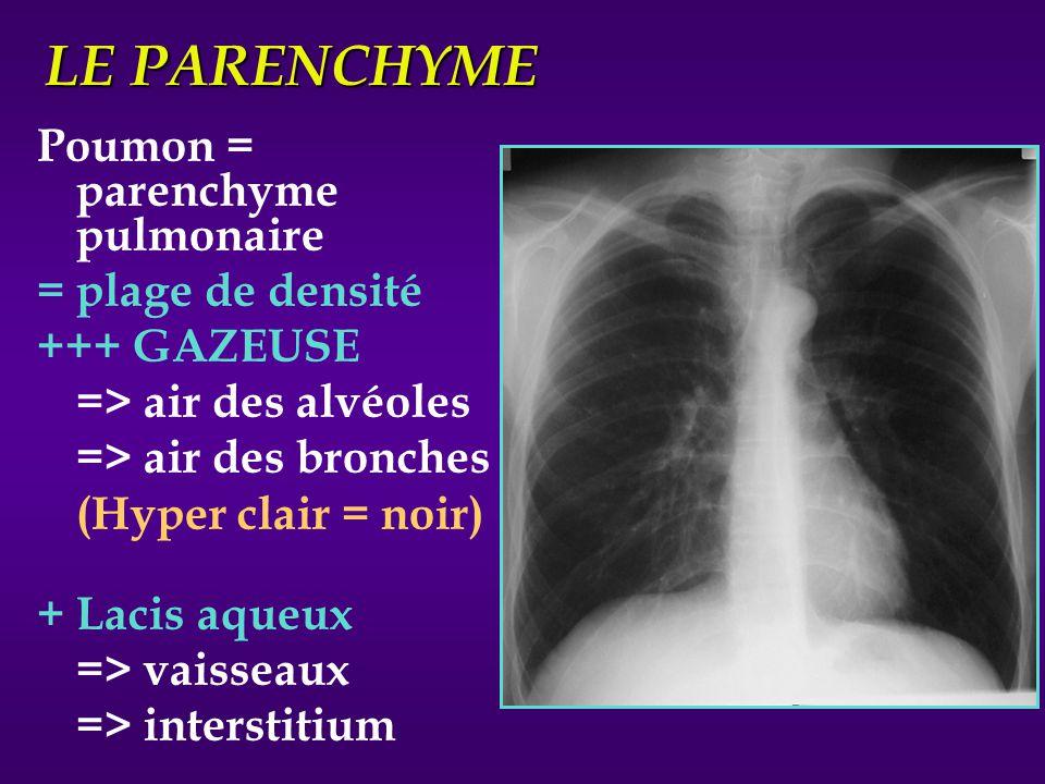 LE PARENCHYME Poumon = parenchyme pulmonaire = plage de densité +++ GAZEUSE => air des alvéoles => air des bronches (Hyper clair = noir) + Lacis aqueu