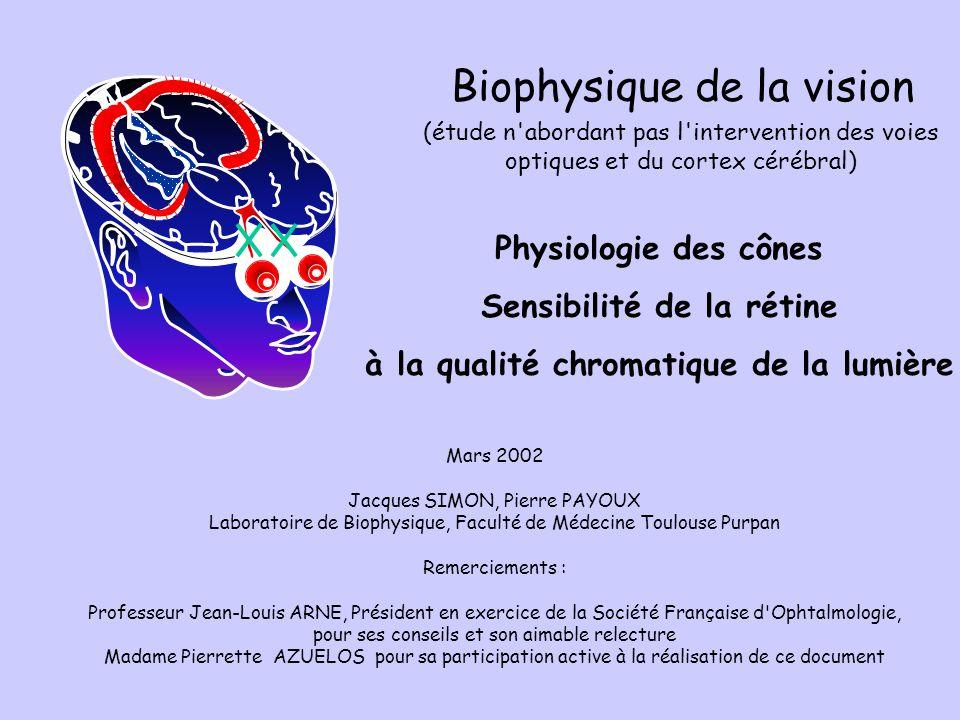 Mars 2002 Jacques SIMON, Pierre PAYOUX Laboratoire de Biophysique, Faculté de Médecine Toulouse Purpan Remerciements : Professeur Jean-Louis ARNE, Pré