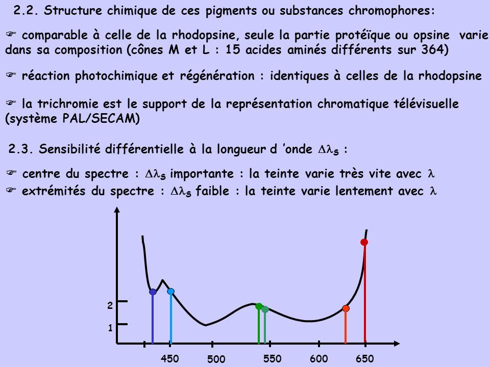 2.2. Structure chimique de ces pigments ou substances chromophores: comparable à celle de la rhodopsine, seule la partie protéïque ou opsine varie dan
