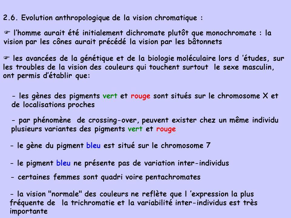 lhomme aurait été initialement dichromate plutôt que monochromate : la vision par les cônes aurait précédé la vision par les bâtonnets les avancées de