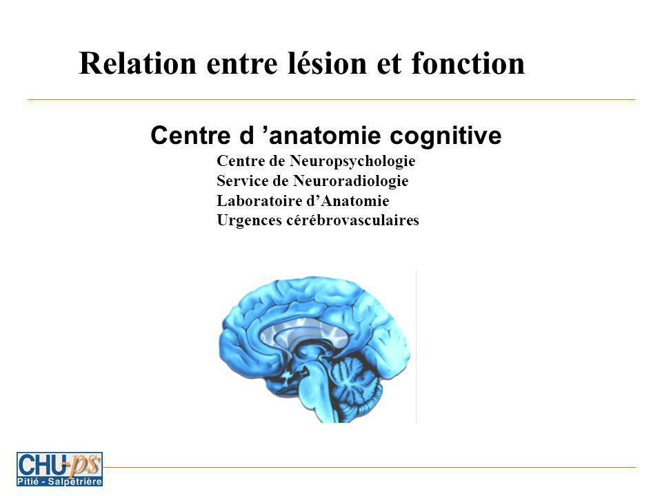 Centre d anatomie cognitive Centre de Neuropsychologie Service de Neuroradiologie Laboratoire dAnatomie Urgences cérébrovasculaires Relation entre lésion et fonction