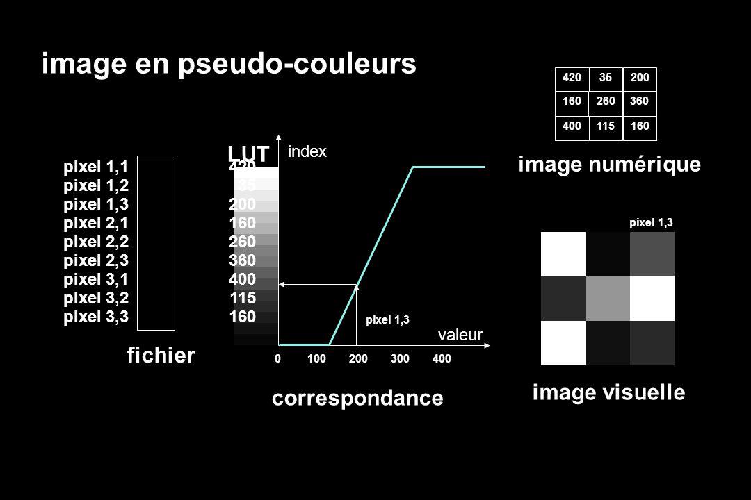 image en pseudo-couleurs LUT index valeur 420 35 200 160 260 360 400 115 160 fichier pixel 1,1 pixel 1,2 pixel 1,3 pixel 2,1 pixel 2,2 pixel 2,3 pixel 3,1 pixel 3,2 pixel 3,3 0100200300400 pixel 1,3 image visuelle 420 image numérique 35 200 160 260 360 400 115 160 correspondance