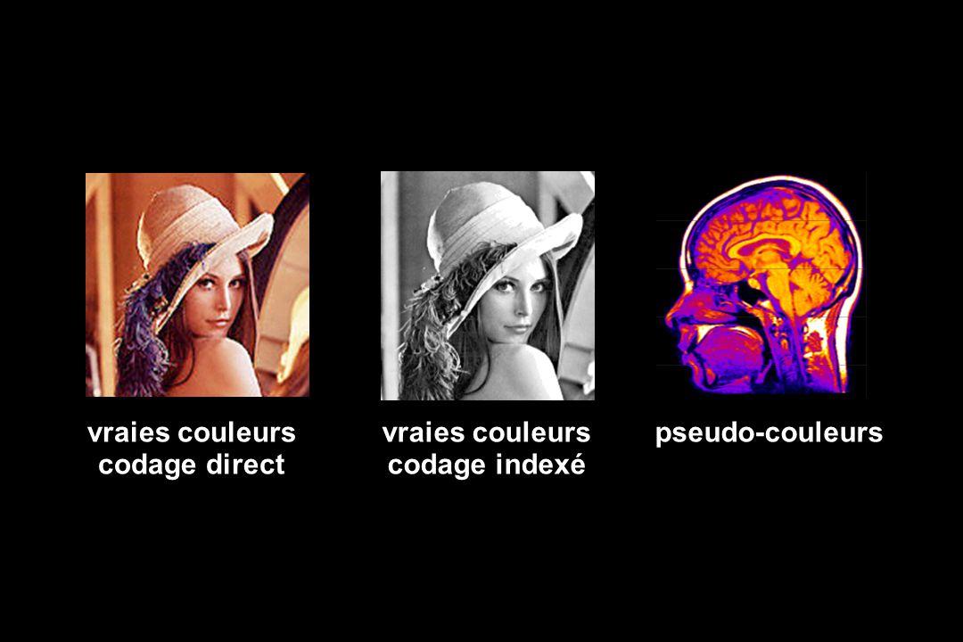 pseudo-couleursvraies couleurs codage indexé vraies couleurs codage direct