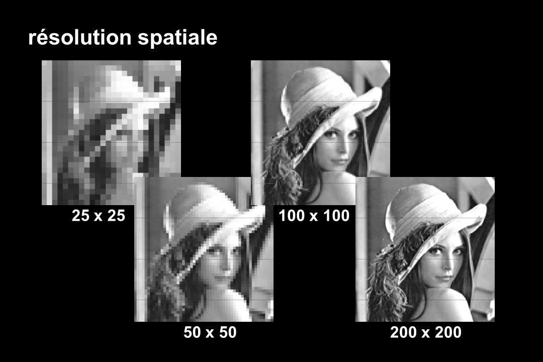 résolution spatiale 100 x 100 25 x 25 50 x 50200 x 200