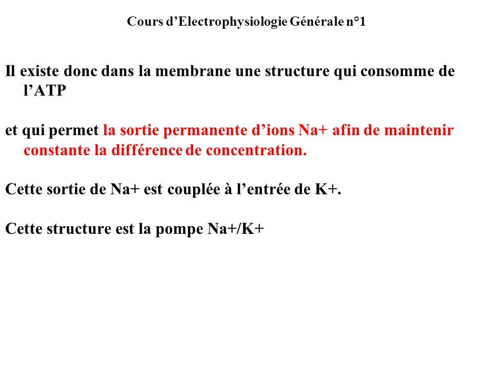 Il existe donc dans la membrane une structure qui consomme de lATP et qui permet la sortie permanente dions Na+ afin de maintenir constante la différe