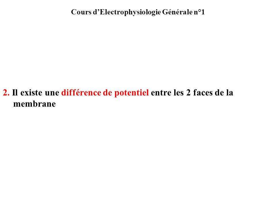 Cours dElectrophysiologie Générale n°1 2. Il existe une différence de potentiel entre les 2 faces de la membrane