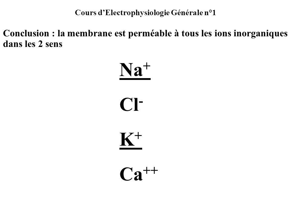 Cours dElectrophysiologie Générale n°1 Conclusion : la membrane est perméable à tous les ions inorganiques dans les 2 sens Na + Cl - K + Ca ++