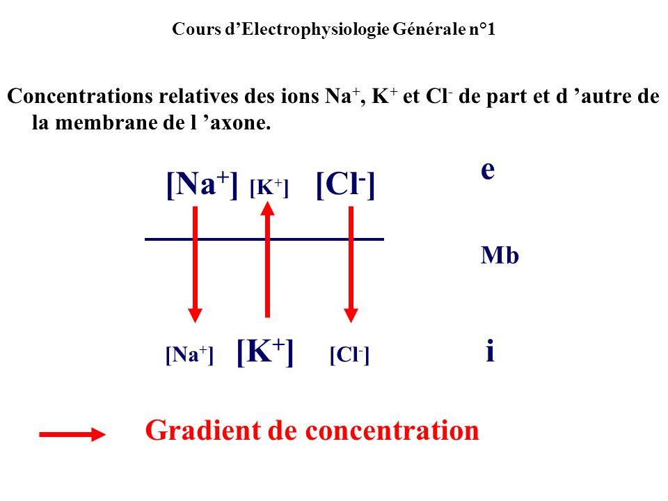 Cours dElectrophysiologie Générale n°1 1/ On constate une entrée dions Na+ (qui suivent leur gradient de concentration).