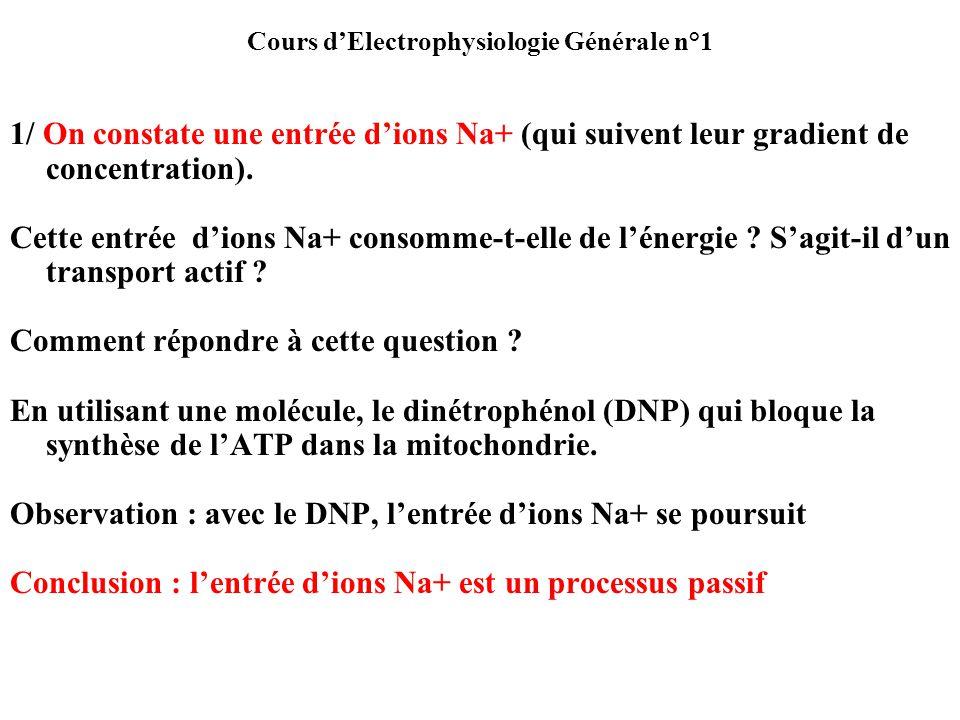 Cours dElectrophysiologie Générale n°1 1/ On constate une entrée dions Na+ (qui suivent leur gradient de concentration). Cette entrée dions Na+ consom