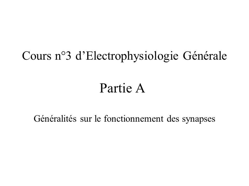 Cours dElectrophysiologie Générale n°3 Synapses électriques et chimiques Neurotransmetteurs Récepteurs Synapse excitatrice PPSE Synapse inhibitrice PPSI Sommation spatio-temporelle et réseaux neuronaux