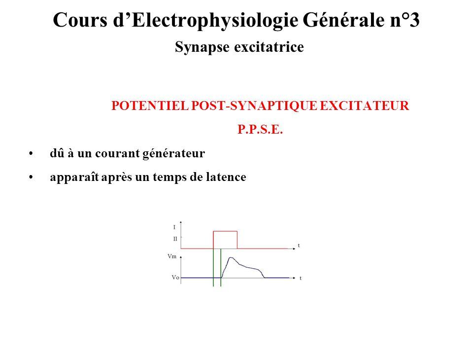 Cours dElectrophysiologie Générale n°3 Synapse excitatrice POTENTIEL POST-SYNAPTIQUE EXCITATEUR P.P.S.E. dû à un courant générateur apparaît après un