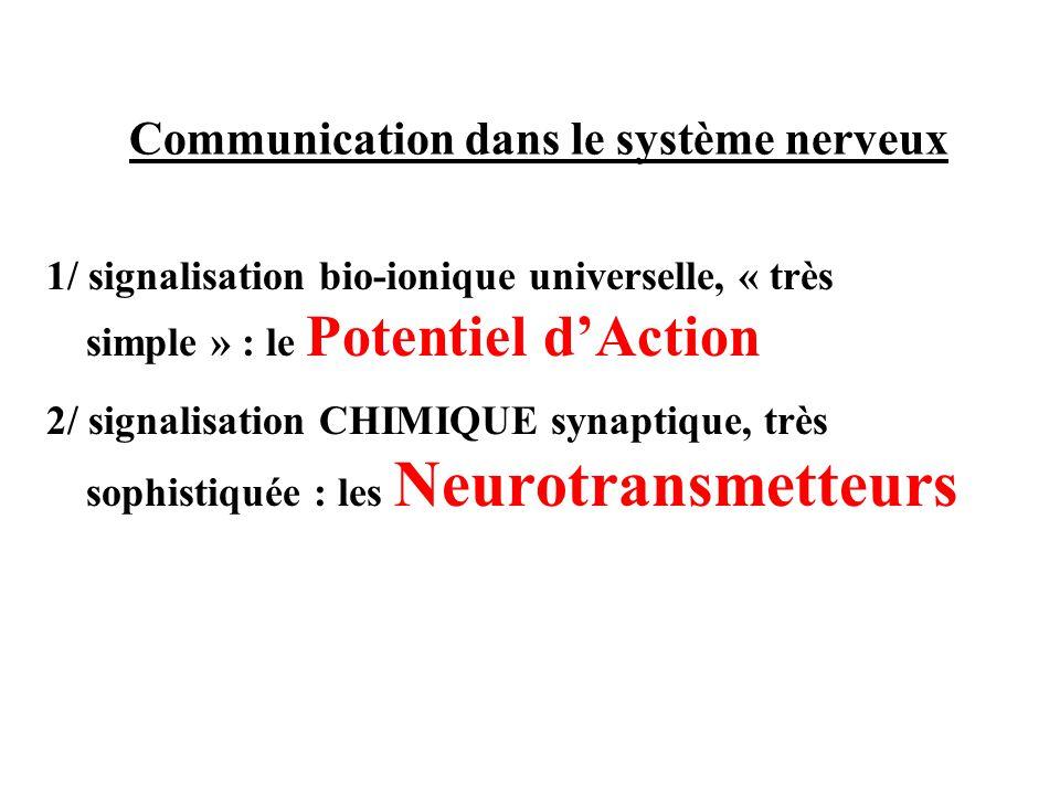 Communication dans le système nerveux 1/ signalisation bio-ionique universelle, « très simple » : le Potentiel dAction 2/ signalisation CHIMIQUE synap