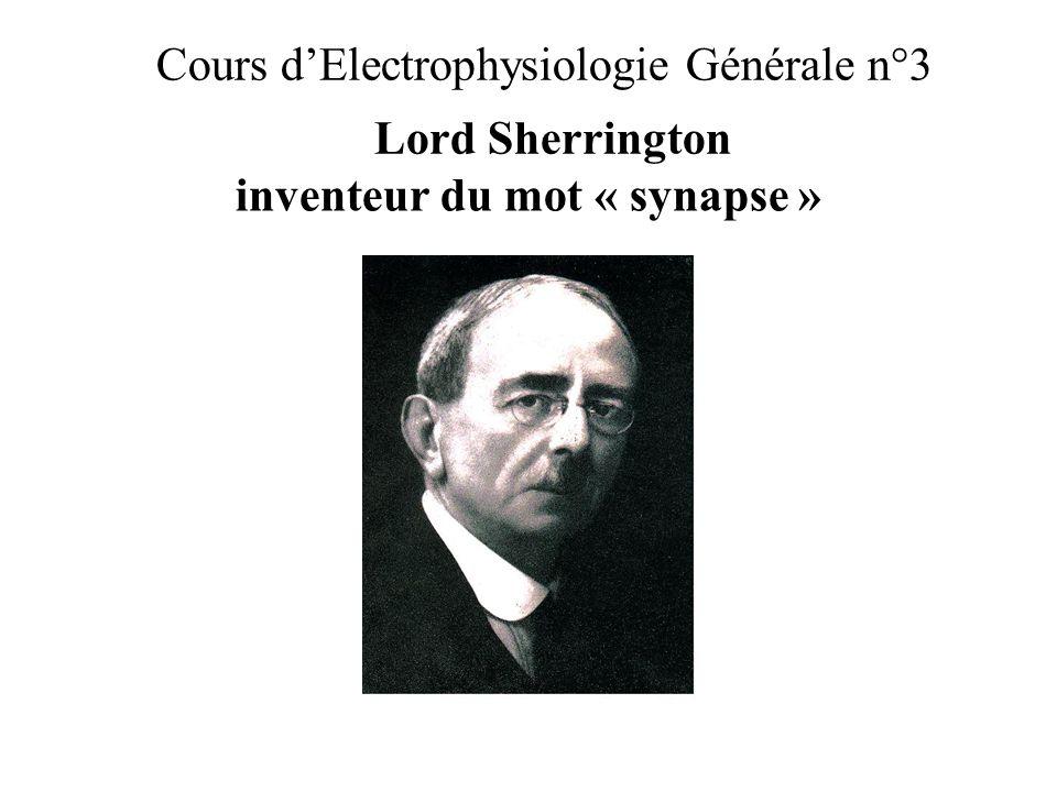 Cours dElectrophysiologie Générale n°3 Lord Sherrington inventeur du mot « synapse »