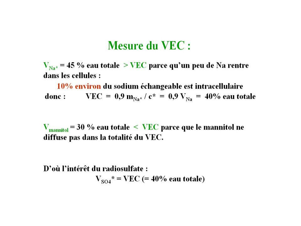 Mesure du VEC 1