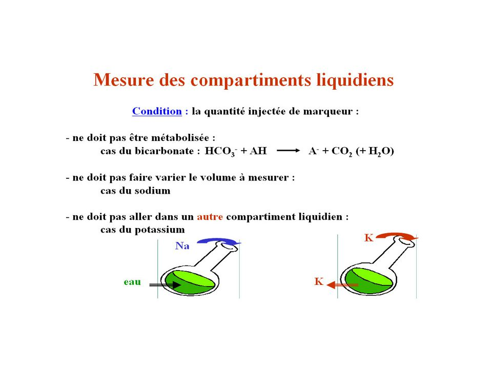 Compartiments liquidiens 2