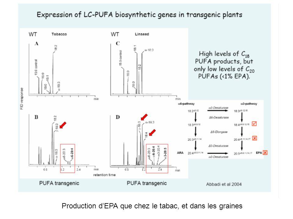Production dEPA que chez le tabac, et dans les graines