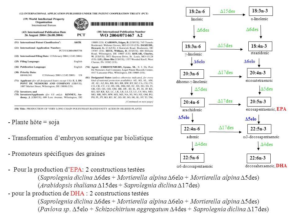 20:4n-6 arachidonic 20:3n-6 dihomo-γ-linolenic 18:3n-6 γ-linolenic 18:2n-6 linoleic 22:6n-3 docosahexaenoic, DHA 18:3n-3 α-linolenic 18:4n-3 stearidonic 20:4n-3 eicosatetraenoic 20:5n-3 eicosapentaenoic, EPA 22:5n-3 ω3-docosapentaenoic 22:4n-6 adrenic 22:5n-6 ω6-docosapentaenoic Δ6des Δ15des Δ17des Δ6des Δ6elo Δ5elo Δ5des Δ4des Δ5elo Δ6elo Δ15des - Plante hôte = soja - Transformation dembryon somatique par biolistique - Promoteurs spécifiques des graines - Pour la production dEPA: 2 constructions testées (Saprolegnia diclina Δ6des + Mortierella alpina Δ6elo + Mortierella alpina Δ5des) (Arabidopsis thaliana Δ15des + Saprolegnia diclina Δ17des) - pour la production de DHA : 2 constructions testées (Saprolegnia diclina Δ6des + Mortierella alpina Δ6elo + Mortierella alpina Δ5des) (Pavlova sp.