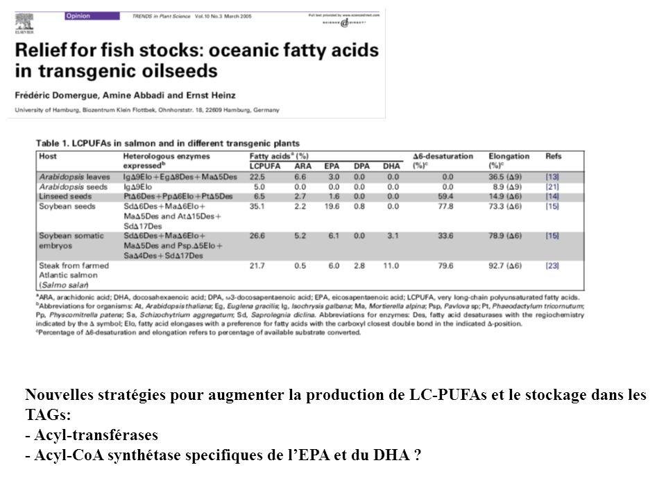 Nouvelles stratégies pour augmenter la production de LC-PUFAs et le stockage dans les TAGs: - Acyl-transférases - Acyl-CoA synthétase specifiques de lEPA et du DHA ?