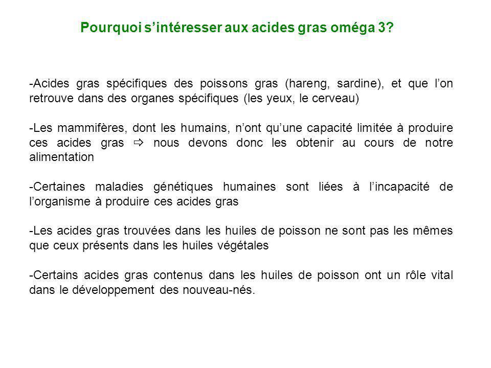Pourquoi sintéresser aux acides gras oméga 3? -Acides gras spécifiques des poissons gras (hareng, sardine), et que lon retrouve dans des organes spéci