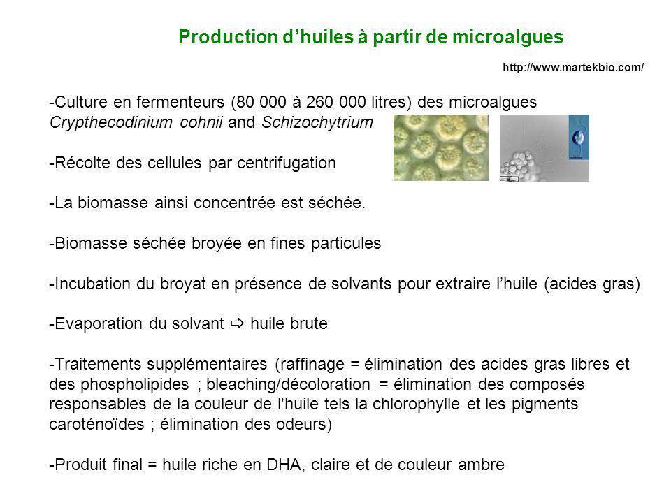 -Culture en fermenteurs (80 000 à 260 000 litres) des microalgues Crypthecodinium cohnii and Schizochytrium -Récolte des cellules par centrifugation -