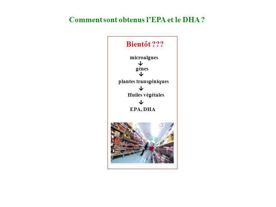 Comment sont obtenus lEPA et le DHA ? Bientôt ??? microalgues plantes transgéniques EPA, DHA Huiles végétales gènes