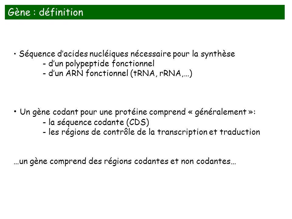 Séquence dacides nucléiques nécessaire pour la synthèse - dun polypeptide fonctionnel - dun ARN fonctionnel (tRNA, rRNA,…) Un gène codant pour une pro
