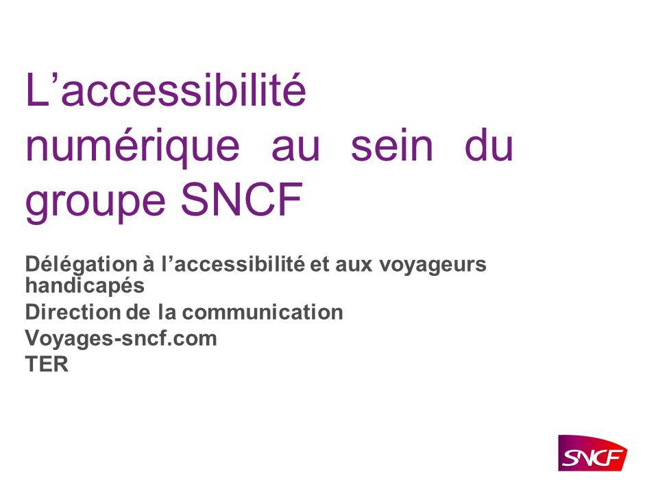 La Délégation à lAccessibilité et aux Voyageurs Handicapés Brigitte Rigaud