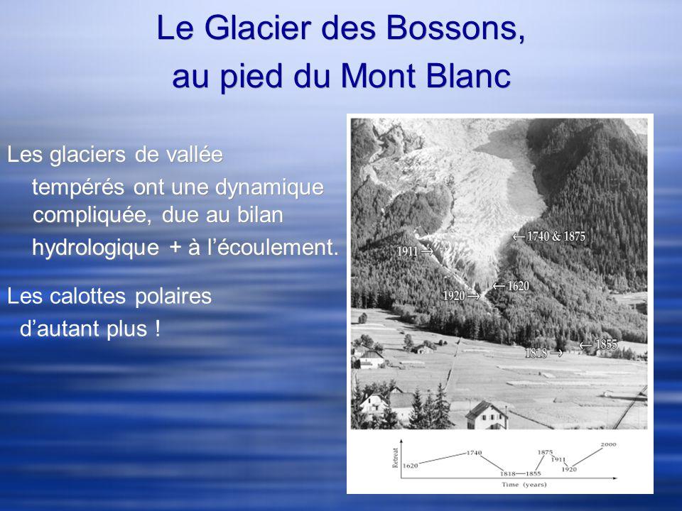 Le Glacier des Bossons, au pied du Mont Blanc Les glaciers de vallée tempérés ont une dynamique compliquée, due au bilan hydrologique + à lécoulement.