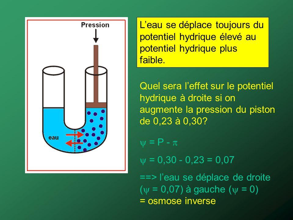 Leau se déplace toujours du potentiel hydrique élevé au potentiel hydrique plus faible. Quel sera leffet sur le potentiel hydrique à droite si on augm