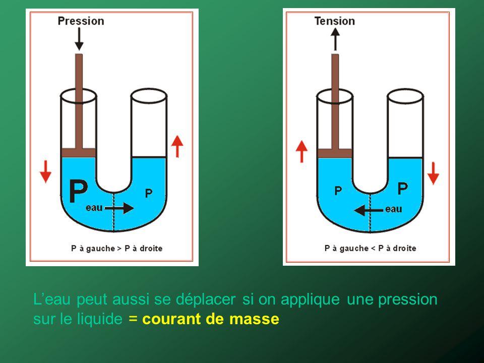 Leau peut aussi se déplacer si on applique une pression sur le liquide = courant de masse