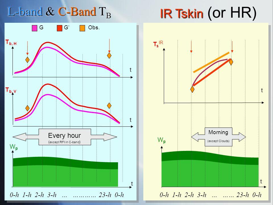 G G Obs. T b, H t WpWp t T b, V t 0-h 1-h 2-h 3-h … ………… 23-h 0-h 0-h 1-h 2-h 3-h … …… 23-h 0-h L-band C-Band L-band & C-Band T B Every hour ( except