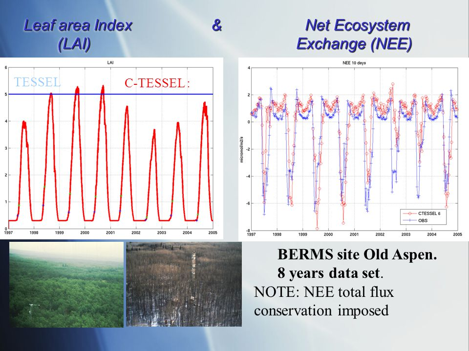 Leaf area Index& Net Ecosystem (LAI) Exchange (NEE) TESSEL C-TESSEL : BERMS site Old Aspen. 8 years data set. NOTE: NEE total flux conservation impose