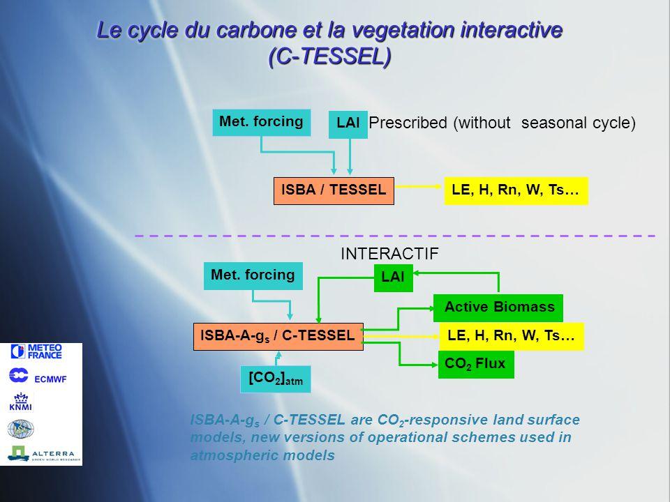 ISBA-A-g s / C-TESSEL Met. forcing LAI LE, H, Rn, W, Ts… Active Biomass CO 2 Flux [CO 2 ] atm ISBA / TESSEL Met. forcing LAI LE, H, Rn, W, Ts… ISBA-A-