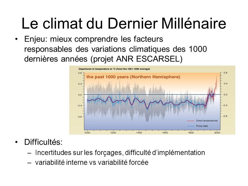 Enjeu: mieux comprendre les facteurs responsables des variations climatiques des 1000 dernières années (projet ANR ESCARSEL) Difficultés: –Incertitude